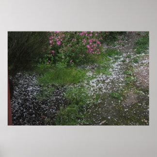 Hail in the garden Poster