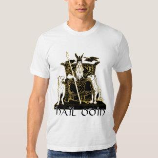 Hail Odin Shirt