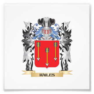 Hailes Coat of Arms - Family Crest Photo Print
