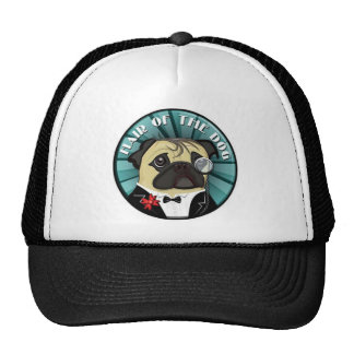 Hair Of The Dog merch Mesh Hat