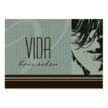 Hair Salon Appointment Cards Business Card Template