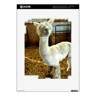 Haircute Pegatina Skin Para iPad 3