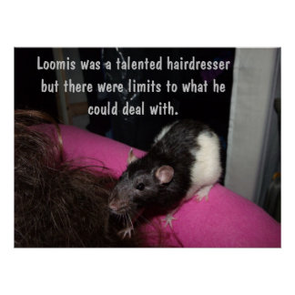 hairdresser rat poster