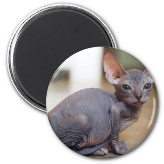 Hairless and Proud Magnet