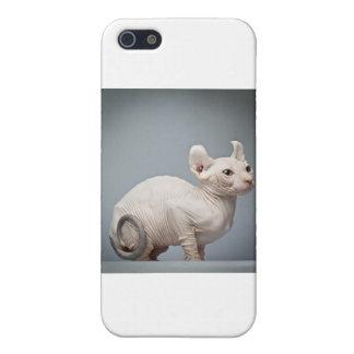 HAIRLESS CAT iPhone SE/5/5s CASE