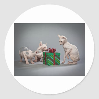HAIRLESS CAT S CHRISTMAS ROUND STICKERS