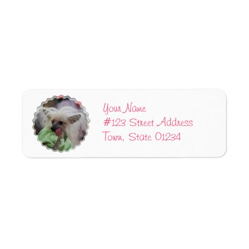 Hairless Chinese Crested Dog Address Labels