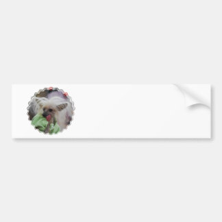 Hairless Chinese Crested Dog  Bumper Sticker Car Bumper Sticker
