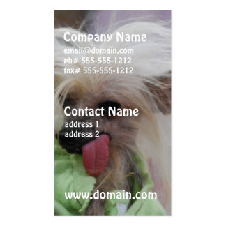 Hairless Chinese Crested Dog Business Cards