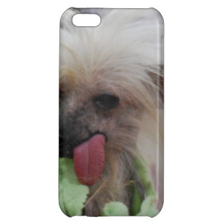 Hairless Chinese Crested Dog Cover For iPhone 5C