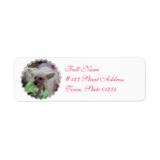 Hairless Chinese Crested Dog Mailing Labels