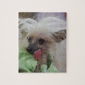 Hairless Chinese Crested Dog Puzzle