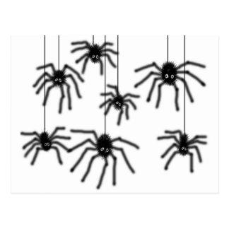 Hairy Cartoon Spiders Postcard