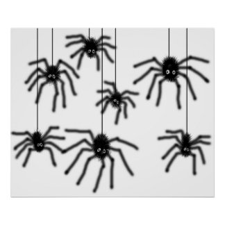 Hairy Cartoon Spiders Poster