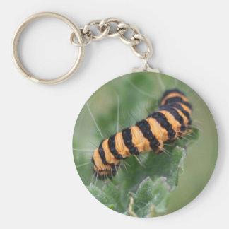 hairy caterpillar basic round button keychain
