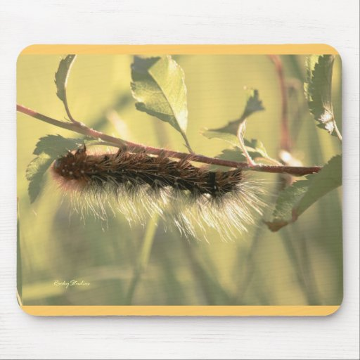 Hairy Caterpillar Mouse Pad