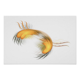 Hairy Crab Poster