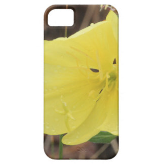 Hairy Evening Primrose Blossom iPhone SE/5/5s Case