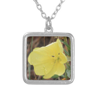 Hairy Evening Primrose Blossom Silver Plated Necklace