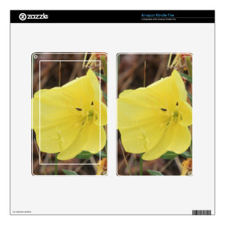 Hairy Evening Primrose Blossom Skin For Kindle Fire