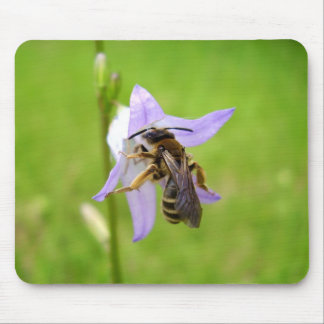 Hairy Footed Flower Bee Mouse Mat