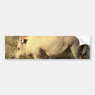 Hairy Warthog Bumper Sticker