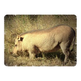 "Hairy Warthog 5"" X 7"" Invitation Card"