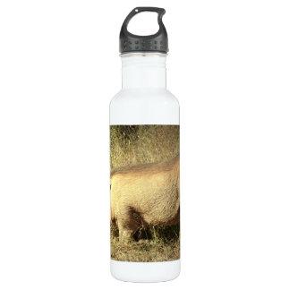 Hairy Warthog 24oz Water Bottle