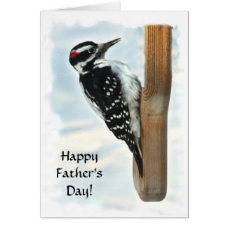 Hairy Woodpecker Fathers Day Card