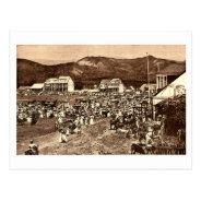 Haiti, Port au Prince Market Vintage Postcard at Zazzle