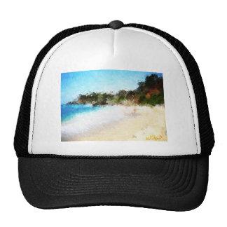 Haitidscn10741_Painting Trucker Hat