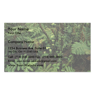 Hakalau Forest National Wildlife Refuge, Hawaii Double-Sided Standard Business Cards (Pack Of 100)