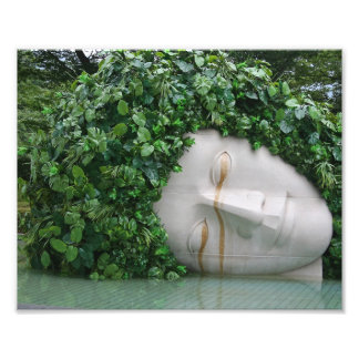 Hakone Arte Fotográfico