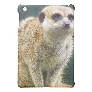 Hakuna Matata! Almost everyone is familiar with th iPad Mini Case
