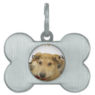 Hakuna Matata I know what you are thinking pinctur Pet Tag