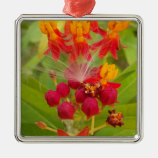 Hakuna Matata lovely green red yellow Flower Buds. Christmas Tree Ornaments