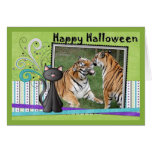 hal-tiger-11-b greeting card