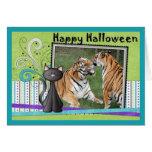 hal-tiger-2 cards