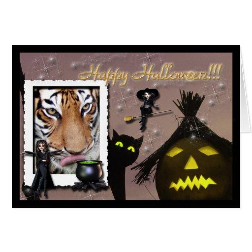 hal-tiger-7 cards