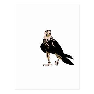 Halcón agresivo despredador del pájaro negro postal