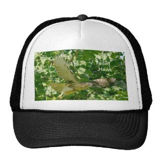 Halcón atado rojo del sombrero en vuelo gorras