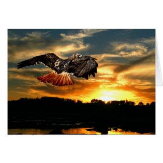 Halcón atado rojo en la puesta del sol tarjeta de felicitación