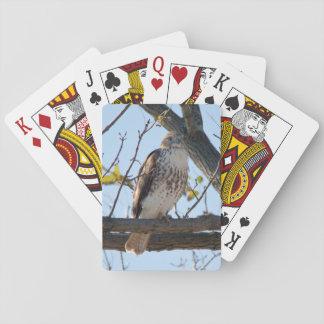 Halcón atado rojo en vuelo baraja de póquer