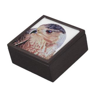 Halcón de los toneleros caja de regalo de calidad