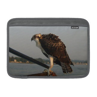 Halcón de Osprey Funda MacBook