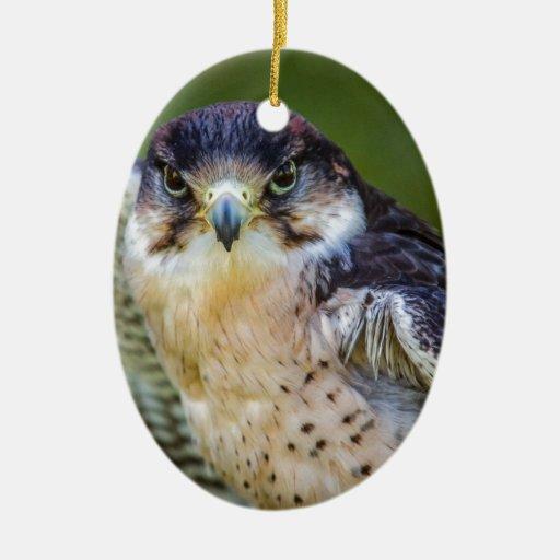 Halcón de peregrino adorno navideño ovalado de cerámica