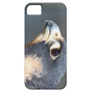 Halcón de peregrino en perfil iPhone 5 protector