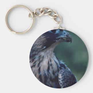 Halcón de peregrino llavero redondo tipo pin