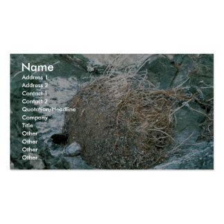 Halcón de peregrino plantillas de tarjetas de visita