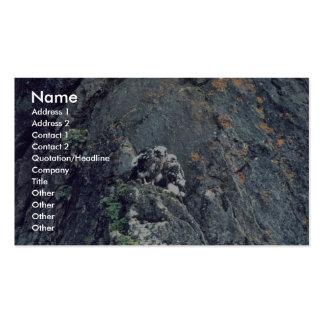 Halcón de peregrino tarjeta de visita
